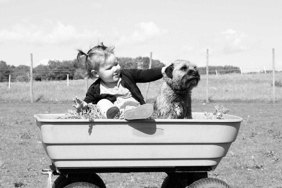 niña con perro en carro