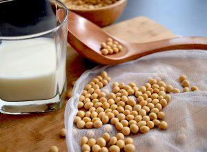 soja y leche de soja