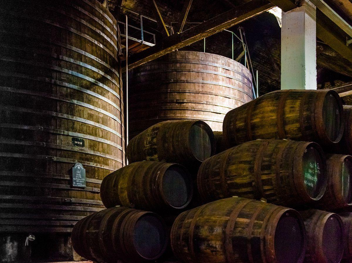 barricas de roble vino de oporto