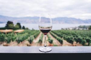 Vinos Canarias